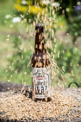 пиво лагер Чехия